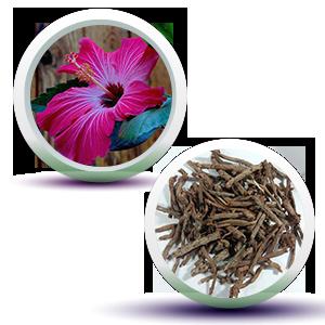 Hibiscus & Manjistha