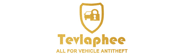 Vehicle Anti-theft
