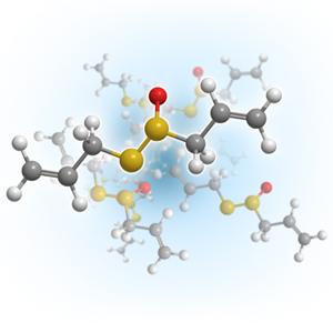Allicin molecule