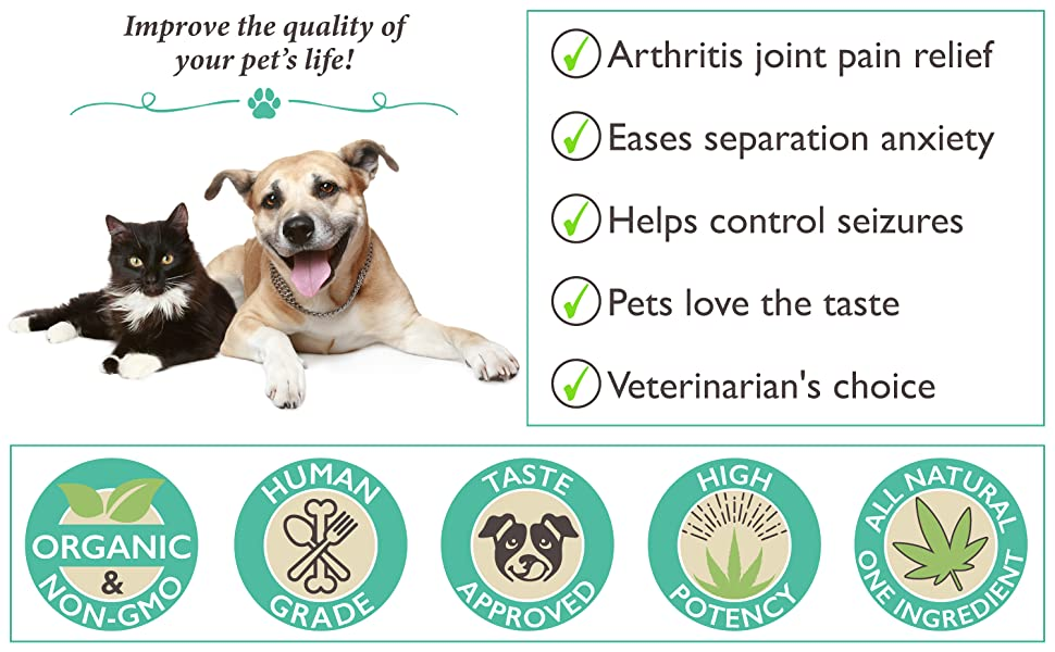Best Paw Nutrition Pure Hemp Oil for Dogs and Cats