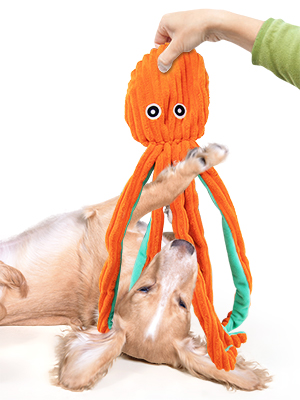 No stuffing dog toys
