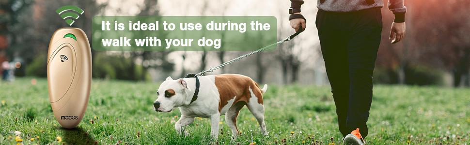 Modus anti barking device