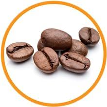Arabica Coffee Bean Extract
