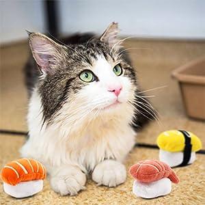 Catnip Sushi