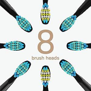 8 brush heads