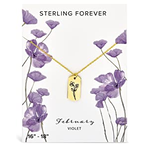 February Birth Flower, Violet