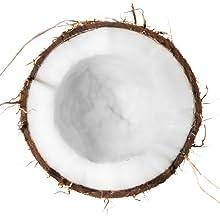 coconut scar keloid scars keloids removal treatment