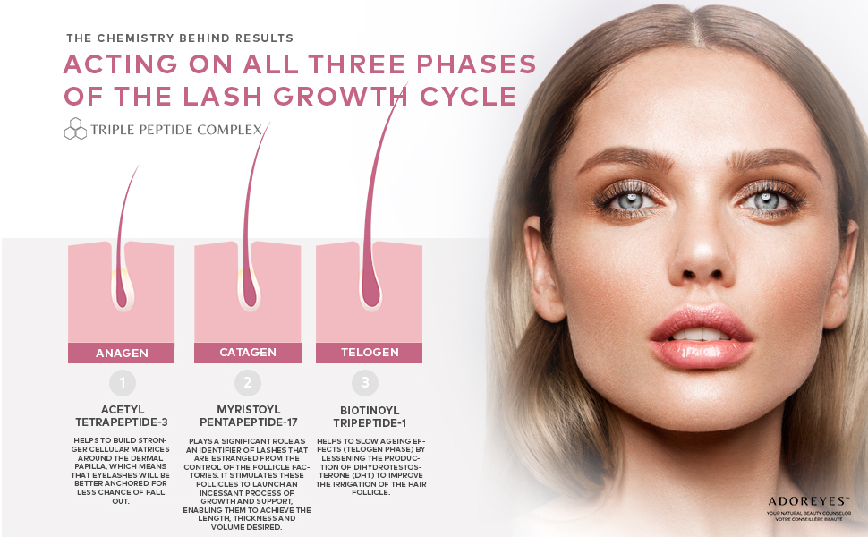 Eyelash Growth Serum Triple Peptide Complex