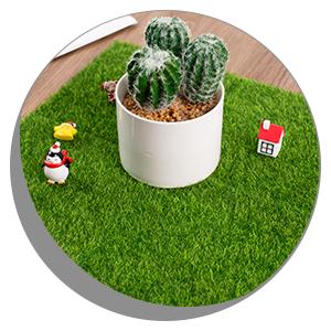 Fairy Artificial Grass