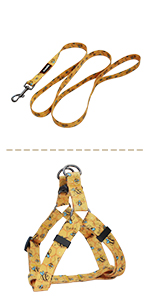 Bee harness leash