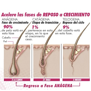 Anagen Active - tratamiento anti-caída de cabello | vitamina pelo con Bitoina, Zinc, vitaminas, Selenio, L-Cistina, Saw palmetto, Astaxantina | ...