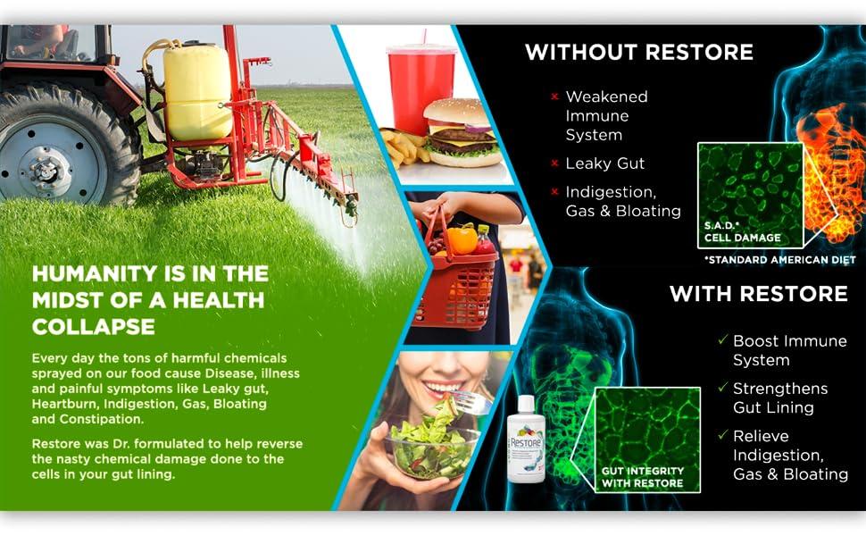 leaky gut repair zenwise fiber pill tums metamucil reducer anti indigestion heartburn pepsin gi sbo