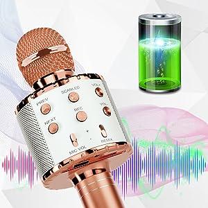 Microphone Karaoke