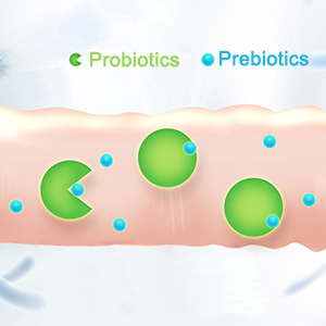 PROBIOTICS AND PREBIOTICS