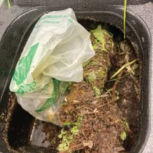 Bag Placed into Composter