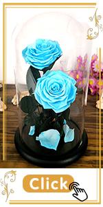sky blue rose azure celeste moon blue ocean bluevivid blue sapphire jewelry royal blue light blue