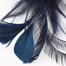 real natural feather