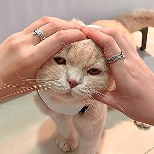 SCOTTISH FOLD 925 STERLING SILVER SCOTTISH CAT PET GIFT ANIMAL JEWELRY CAT RING