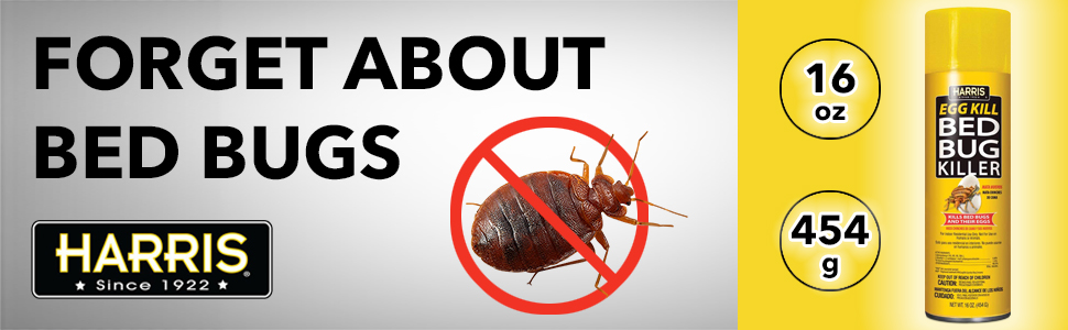 forget about bugs