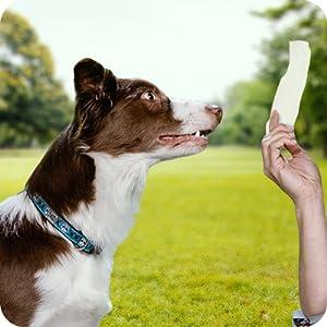 rawhide chews pets love