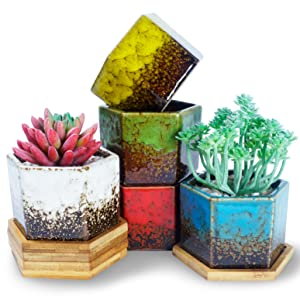 3.9 Inch Hexagon Succulent Pots