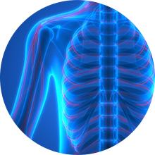 Nature's Life Vitamin D-2 2000IU High Potency Ergocalciferol Supplement May Support Bone amp; Heart