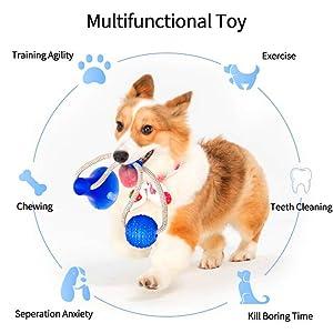 Hundespielzeug Set,Interaktives Welpenspielzeug Pet Rope Spielzeug für Kleine mittlere große Hunde
