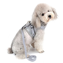 gray dog harness