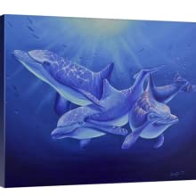 dolphin magic canvas staging