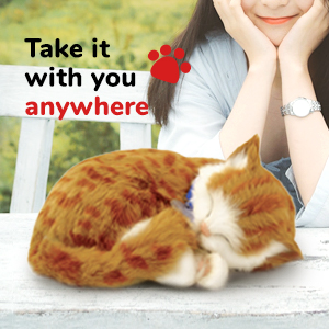Autistic toy fake dog faux dog purring cat toy robot pet dog toy for kids barking dog toy toy cat