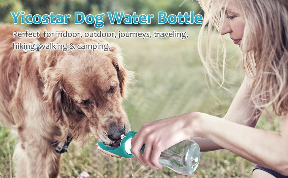 Dog water bottle for travel, hiking