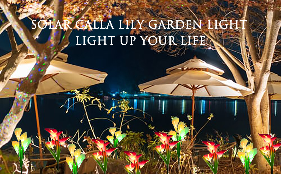 solar calla lily garden light beautiful