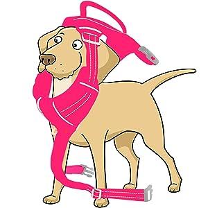 gentle leader easy walk harness reflective vest shepards hooks for outdoor dog seat belt
