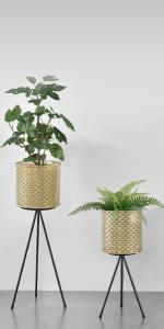 Support pour plantes, support pour fleurs, pot de fleurs, support en métal, plantes en pot, support pour pot de fleurs.