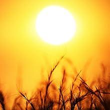 sun with vitamin d