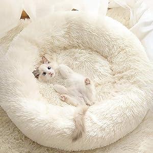 Gavenia Cat Beds for Indoor Cats