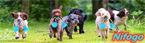Hundekauspielzeug Aggressive Kautiere unzerstörbares Hundespielzeug interaktiv zum Reinigen Zähne
