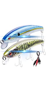 Electronic lures