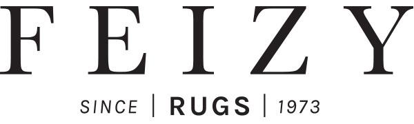 Feizy Brand Logo