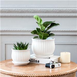SanDope Stripe Flowerpot