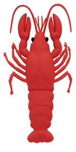 Lobster zip drive 8GB