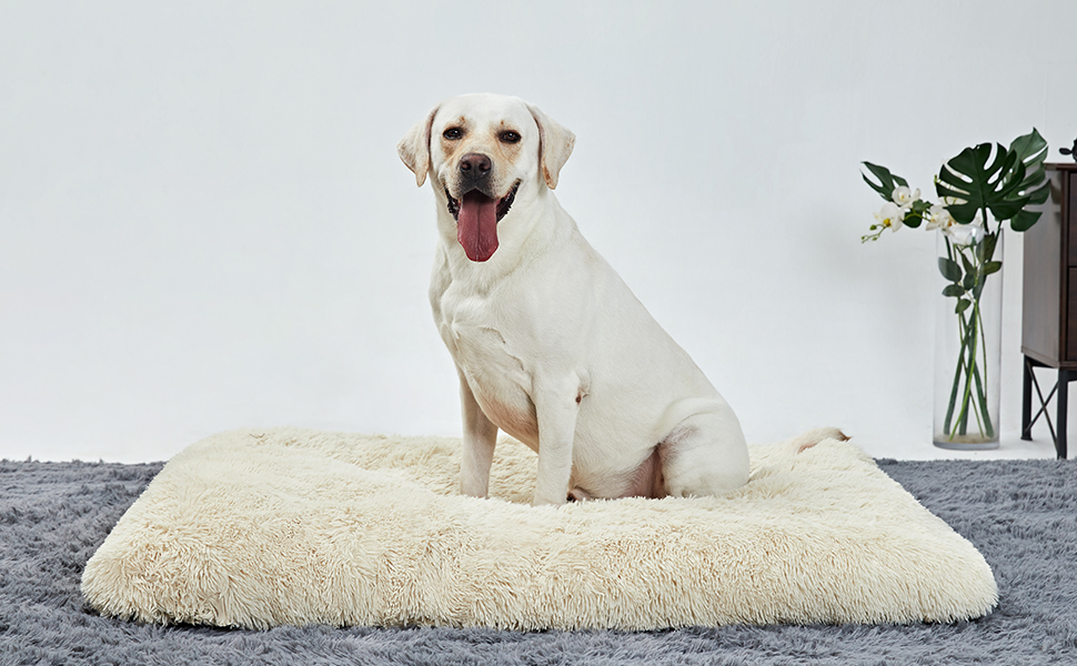 dog bed chew dog beds crate pads dog beds indestructible washable pet bed large