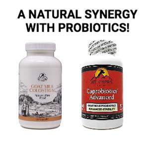 colostrum probiotic synergy