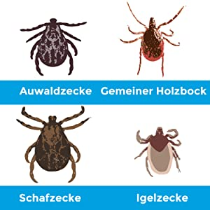 BluePet Tick Trick Zeckenentferner Zeckenhaken Zeckenzange zecke entfernen Borelliose FSME Karte