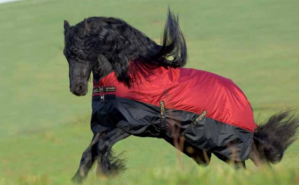 Image of a horse wearing the turnout while running through a pasture