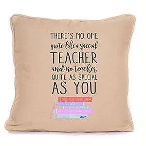 Teacher's Day Cushion