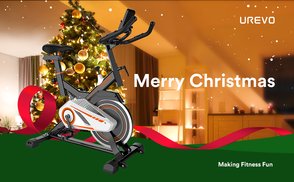 Indoor Exercise Cycling Bike