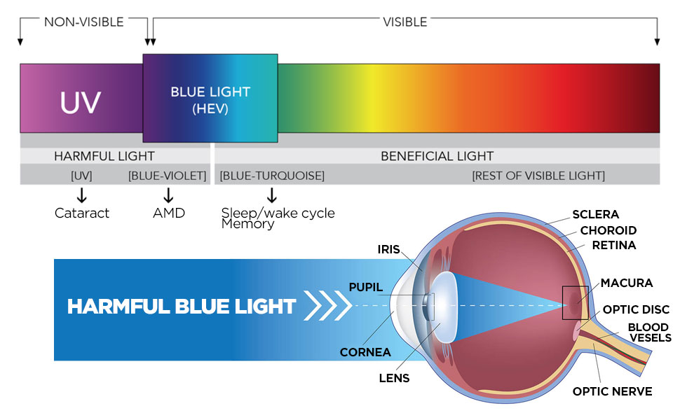 bluelight film bluelight filter bluelight block
