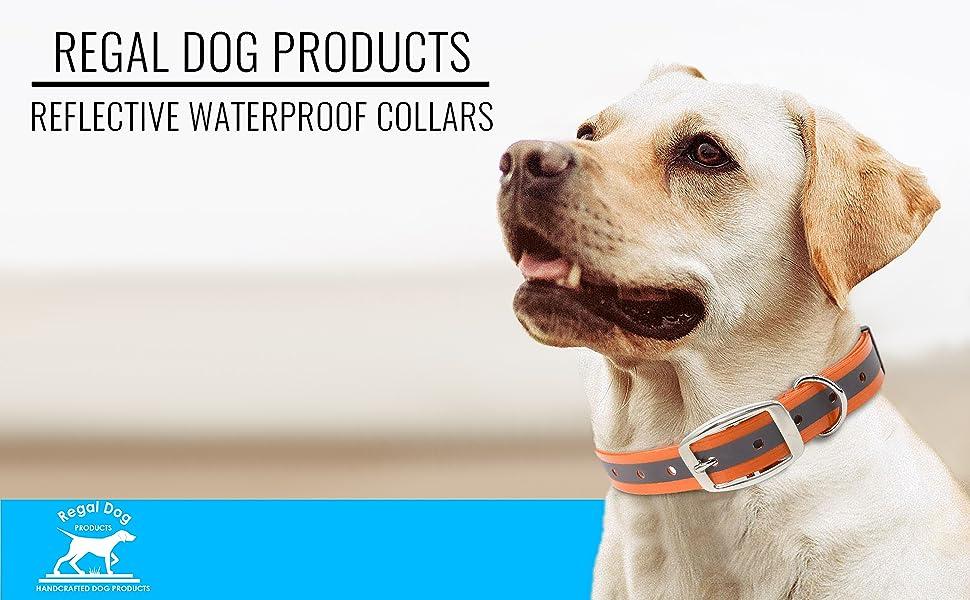 belt big breed buckle care wide collar comfortable dark dog duty female glow harness heavy large