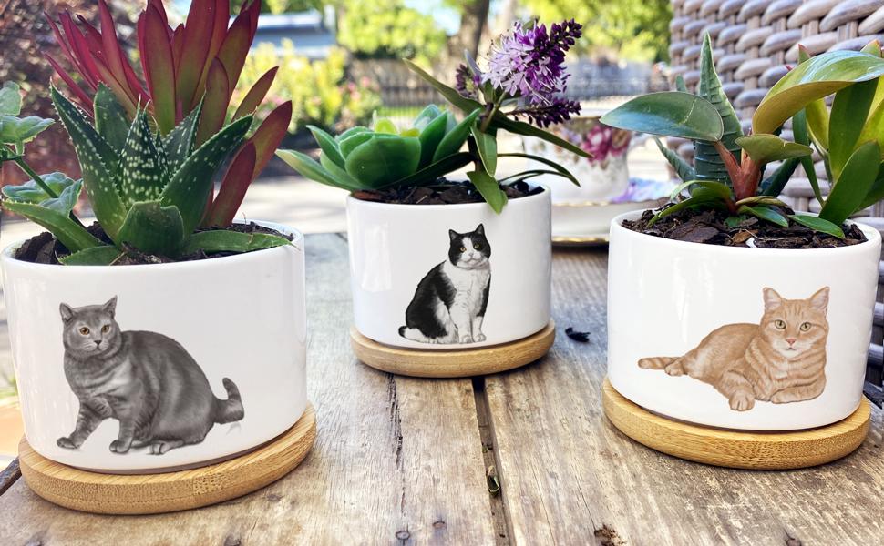 Cat Lover Speckled Cat Pot Cat Gift Cat Lady Cat Planter